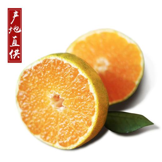中华名果西海蜜桔 汁多无籽 皮薄肉厚 清甜爽口 5斤/10斤装 商品图4