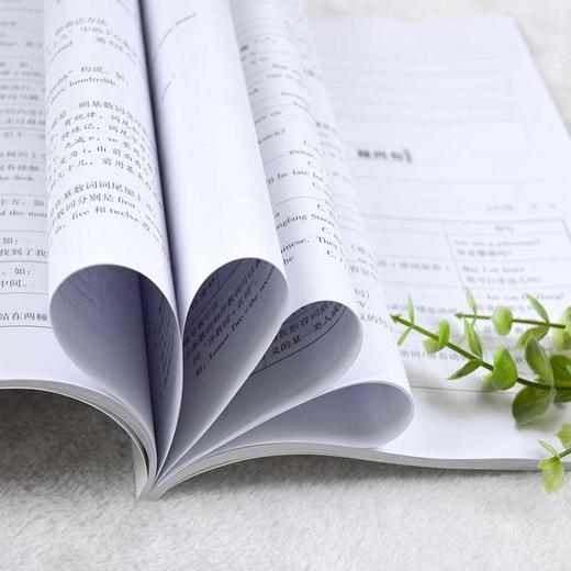 【开心图书】小学知识大全语文数学英语备考复习宝典全3册 商品图2