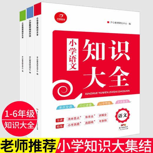 【开心图书】小学知识大全语文数学英语备考复习宝典全3册 商品图7