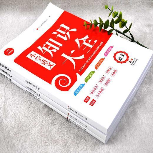 【开心图书】小学知识大全语文数学英语备考复习宝典全3册 商品图1