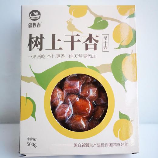 新疆树上吊干杏 肉厚饱满 甜带丝酸 软糯可口 500g*2盒 商品图4