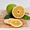 可直接吸的福建漳州葡萄柚 皮薄多汁 酸甜爽口 柚香四溢 净重4.8-5.2斤 商品缩略图2