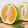 可直接吸的福建漳州葡萄柚 皮薄多汁 酸甜爽口 柚香四溢 净重4.8-5.2斤 商品缩略图3