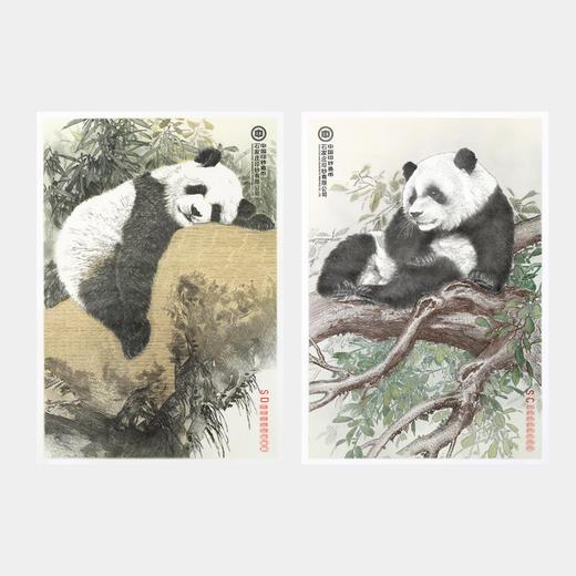 【中国印钞造币】联合国大熊猫钞艺画 商品图2