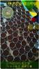 超细腻柔滑七不外用姜膏 姜软膏 姜霜膏10克/15克/30克/50克/100克/150克/200克便携外治万用膏大悲咒外伤烫烧伤冻疮原始点外热源 商品缩略图0