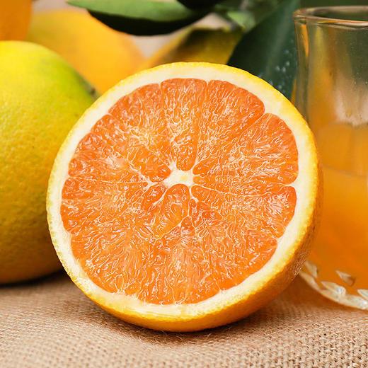 九月红秋橙 果重9斤【三峡特产】秭归秋橙九月红!橙香满溢!汁多甘甜!口感鲜嫩!绿色有机 商品图2