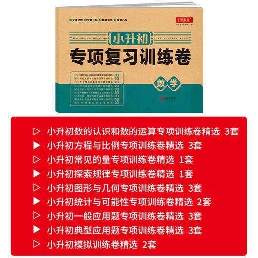 【开心图书】小升初专项复习训练卷语文数学英语全3册冲刺名校必备教辅 商品图4