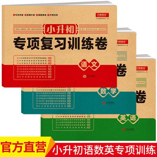 【开心图书】小升初专项复习训练卷语文数学英语全3册冲刺名校必备教辅 商品图0