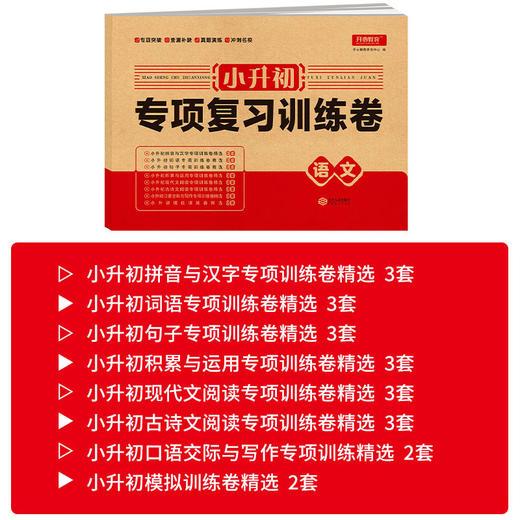 【开心图书】小升初专项复习训练卷语文数学英语全3册冲刺名校必备教辅 商品图5