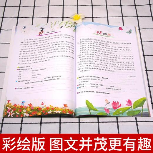 【开心图书】全彩版1-6年级小学语文+英语阶梯阅读训练100篇畅销十年全新升级 商品图4