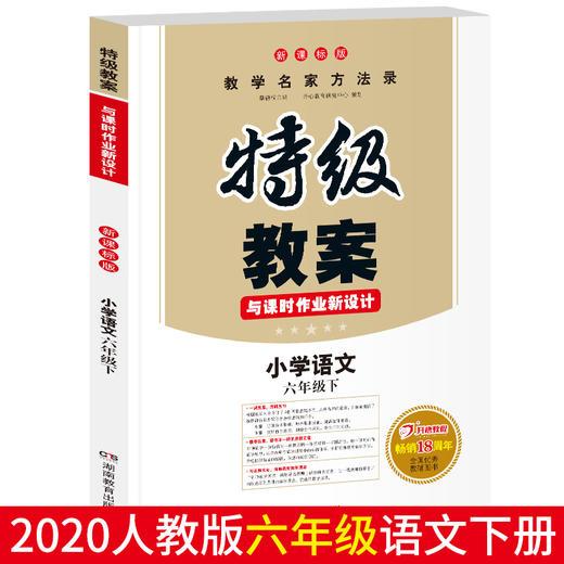 【开心图书】小学1-6年级语文下册特级教案全国畅销18周年纪念版 商品图11