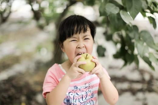 199元抢总价值1400元的2021嘉兴版水果护照!无限量畅吃+免费带走22斤水果+精品农场活动 带上孩子一起亲近大自然 商品图5