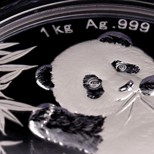 2020年熊猫1公斤精制银币 商品图2