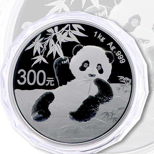 2020年熊猫1公斤精制银币 商品图0