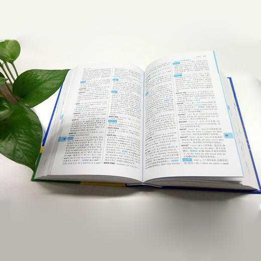 【开心图书】高中英语语法全解+英汉双解大词典(原版大开本/缩印版) 商品图7