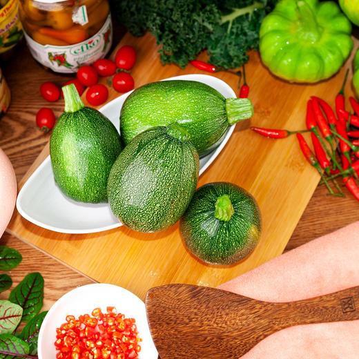 5斤装云南蔬菜圆小瓜 圆润饱满 云南特色蔬菜 产地新鲜采摘 商品图4