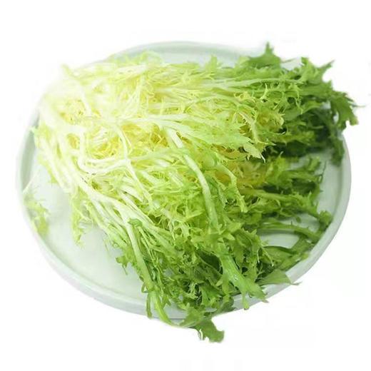 云南黄心苦叶生菜蔬菜 清脆可口 云南产地新鲜采摘 500g/1000g 商品图0