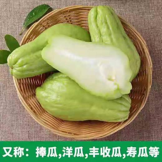 5斤装云南佛手瓜 青皮白肉 云南农家自种绿色蔬菜 商品图1