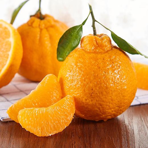 顺丰直达 四川不知火丑橘  果汁糖度在13%~17% 新鲜当季水果 易剥皮 味道清甜 商品图1