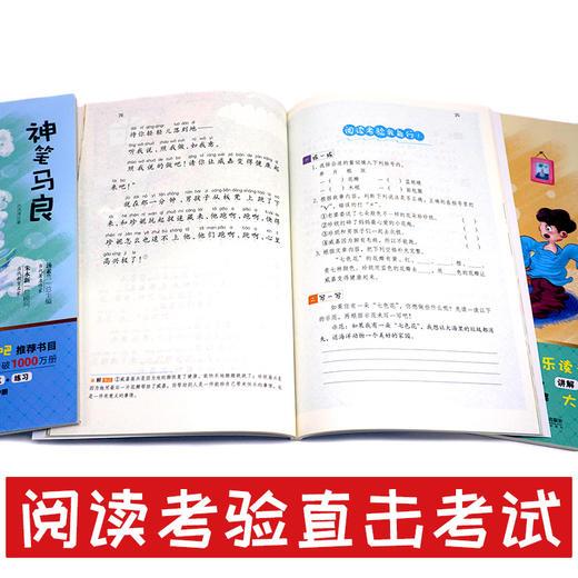 二年级下册快乐读书吧玩具/神笔/花/愿望+好词好句好段点评版全5册(玲儿老师) 商品图5
