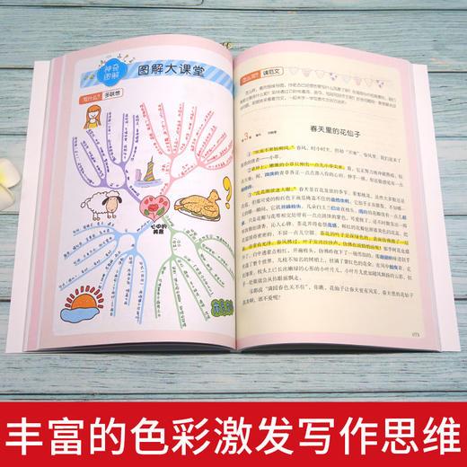 二年级下册快乐读书吧玩具/神笔/花/愿望+好词好句好段点评版全5册(玲儿老师) 商品图10