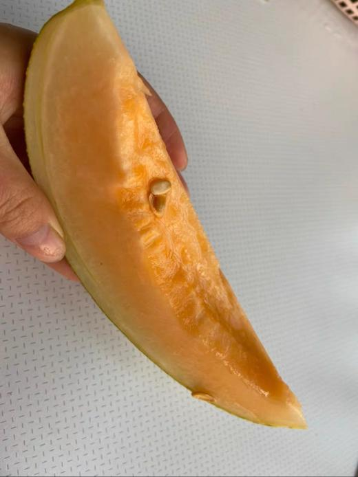 【限量优惠】晓蜜哈密瓜39元2个装 带箱7~8斤 脆甜爽口 当季蜜瓜 商品图2
