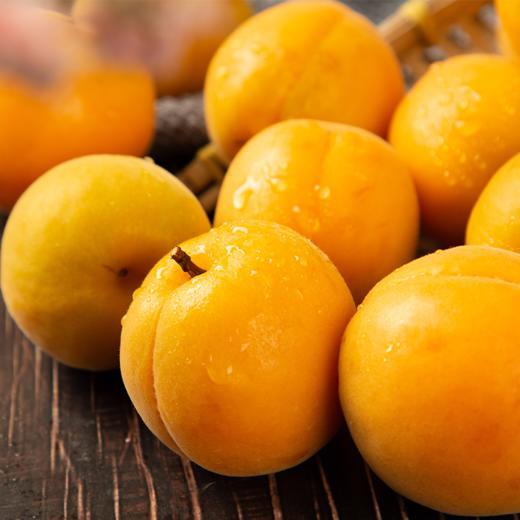 陕西新鲜黄杏 个大饱满 酸爽多汁 当季水果 2斤/4斤现摘现发 商品图2