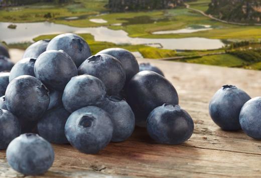 【嘉兴市包邮】怡颗莓 当季云南蓝莓4盒装 约125g/盒 新鲜水果 商品图1