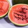 沙漠小吊西瓜  果肉鲜红  瓜瓤饱满  口感多汁~ 商品缩略图0