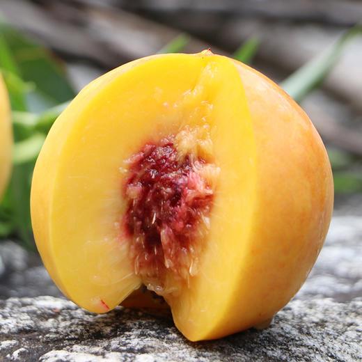 蒙阴应季头茬黄金油桃 甜蜜多汁 香酥味美 3斤装/5斤装 商品图0