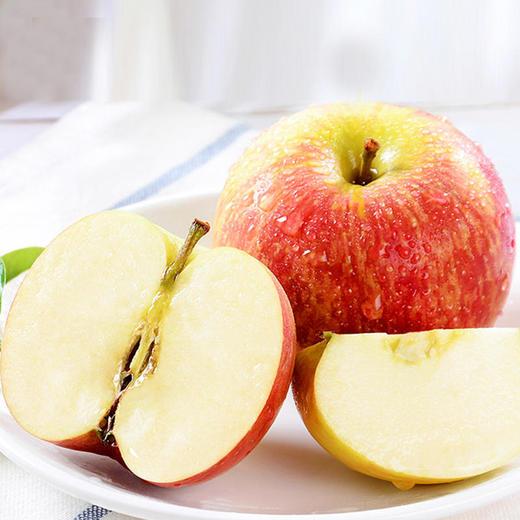 山西 • 红富士苹果 个大皮薄 脆甜爽口 每日营养空投佳品 9斤包邮 商品图2