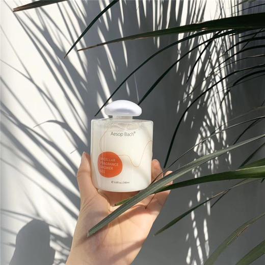 【为思礼】【一套2瓶,可以卸防晒的沐浴露】英国Aesopbach持久留香377沐浴露男女沐浴露乳液 商品图6