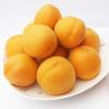 【农道好物精选推荐】凯特大黄杏 个大饱满 颗颗鲜美 5斤超值包邮 商品缩略图4