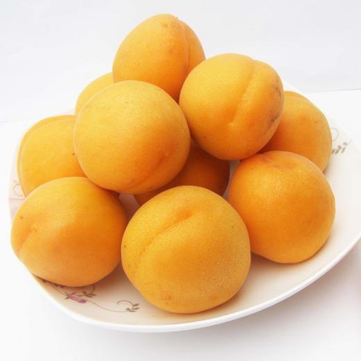 【农道好物精选推荐】凯特大黄杏 个大饱满 颗颗鲜美 5斤超值包邮 商品图4