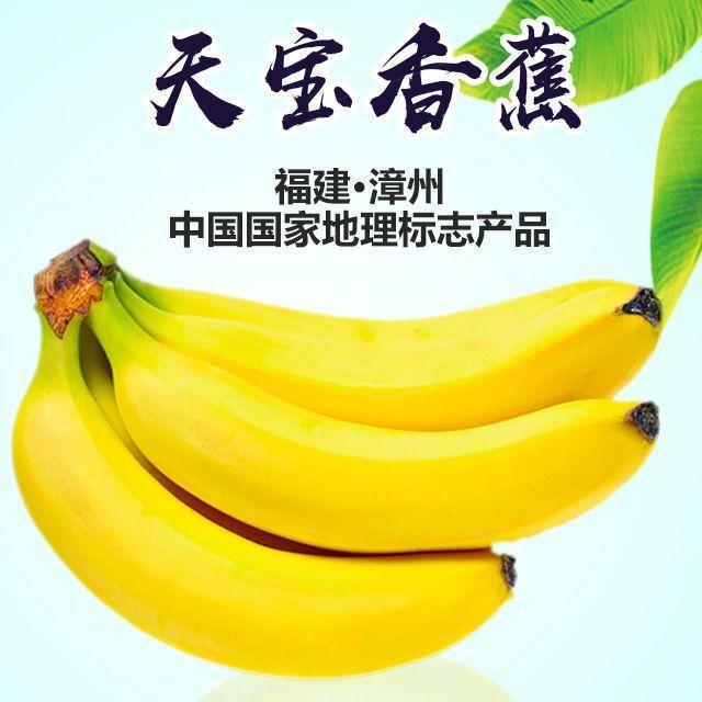 【农道好物精选】天宝香蕉 农家青香蕉现砍现发 5斤 到货自行催熟 告别工业催熟 商品图0