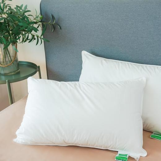 Suprelle Health长效防螨抗菌枕 商品图0