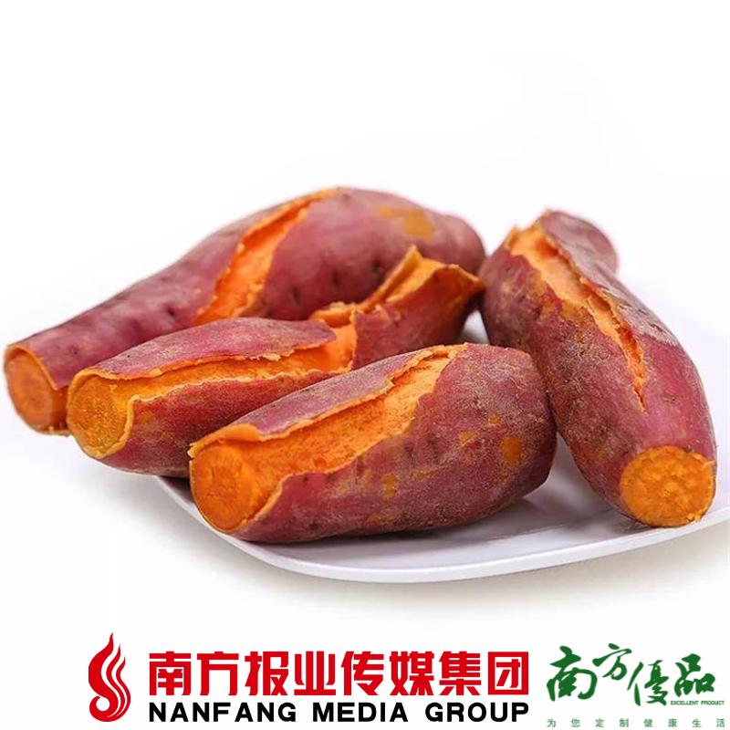 【全国包邮】湛江西瓜红 毛重红薯 10斤±2两 (48小时之内发货) 商品图0
