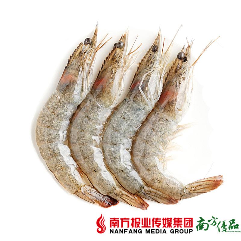 【珠三角包邮】海彪生鲜 南美白对虾  约200g-250g/盒 3盒/份 (7月11日到货) 商品图2