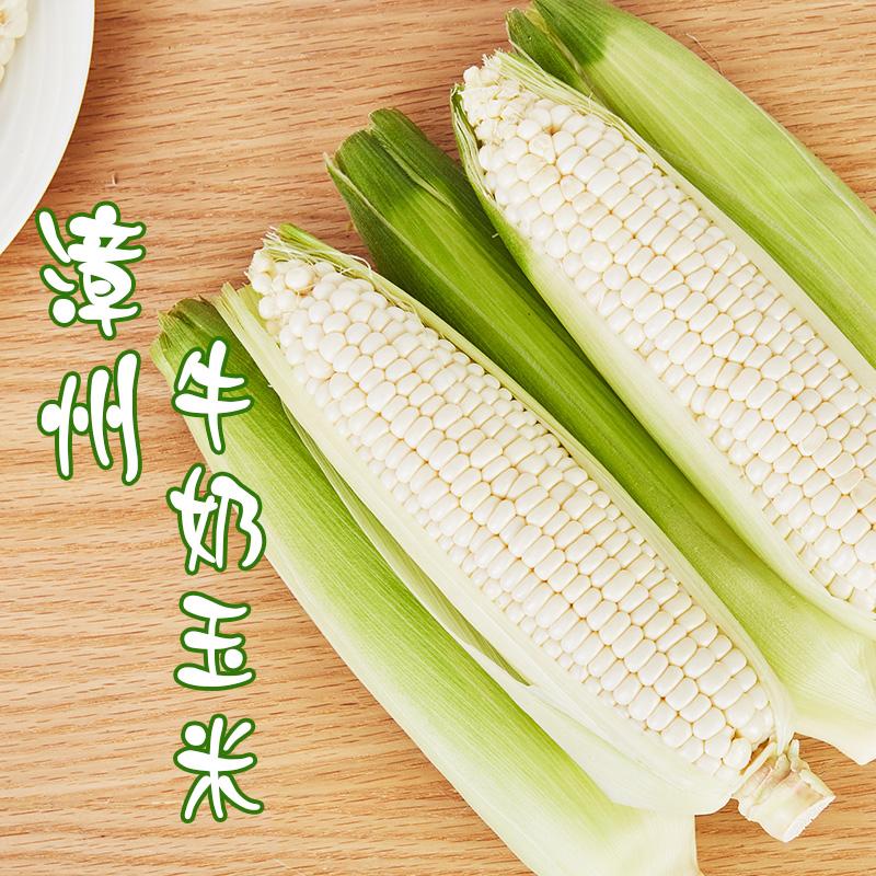 [牛奶玉米]一口爆汁 清甜爽口 3.8斤装(约6-8根) 商品图0