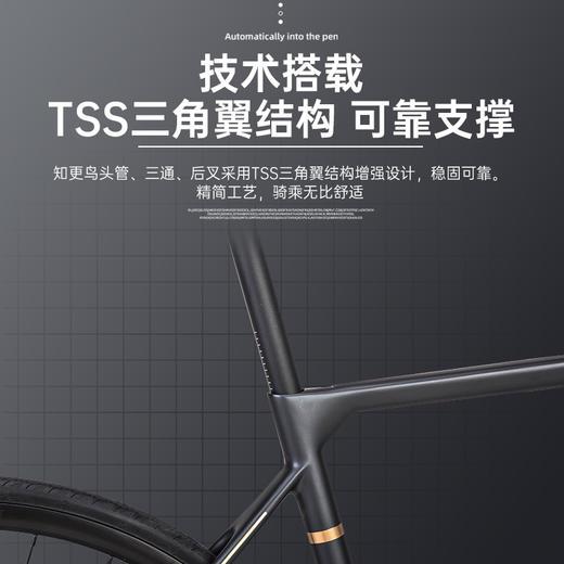 瑞豹PARDUS知更鸟 22变速碳纤维弯把破风自行车 商品图3