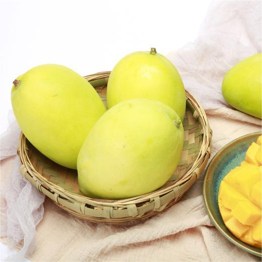 【农道好物精选】芒果中的Plus攀枝花凯特芒  个大软糯  香味浓郁多汁  皮薄核小 商品图3