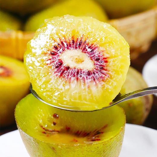 四川红心猕猴桃 高维C 肉质鲜脆 清香不腻 商品图0