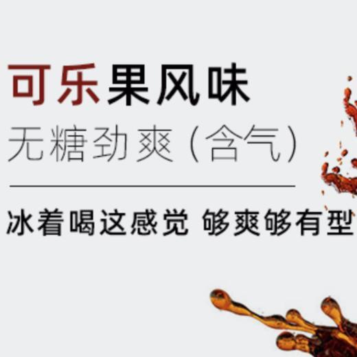 【半价特惠】江浙沪包邮 燃力士 无糖无脂肪维生素网红饮料 300ml 14.9元 8罐装 商品图3