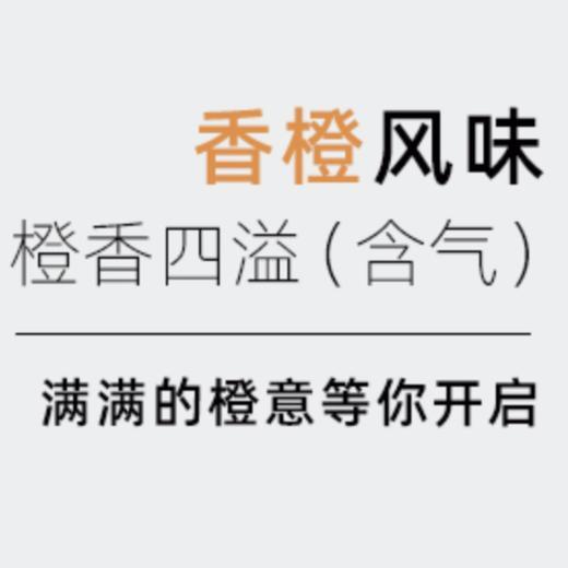 【半价特惠】江浙沪包邮 燃力士 无糖无脂肪维生素网红饮料 300ml 14.9元 8罐装 商品图1