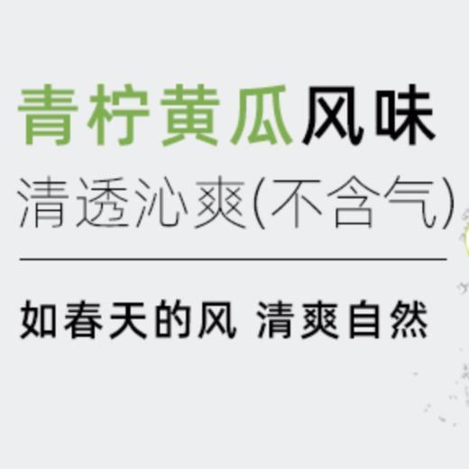 【半价特惠】江浙沪包邮 燃力士 无糖无脂肪维生素网红饮料 300ml 14.9元 8罐装 商品图7