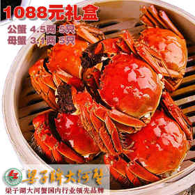 【金秋蟹礼】梁子牌梁子湖大河蟹礼盒1088型 螃蟹