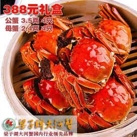 【金秋蟹礼】梁子牌梁子湖大河蟹礼盒388型 螃蟹