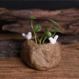 【为思礼  小清新】一石二鸟 多肉花盆水培土培 创意手工陶瓷仿真石头花器摆件