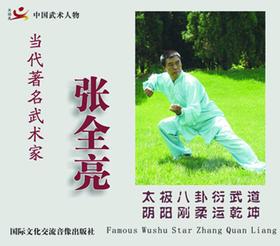中国武术人物--张全亮(1VCD)