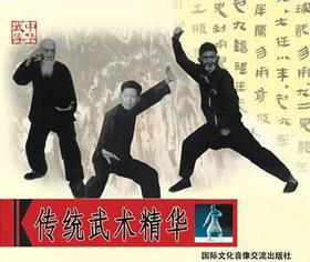 传统武术精华(2VCD)